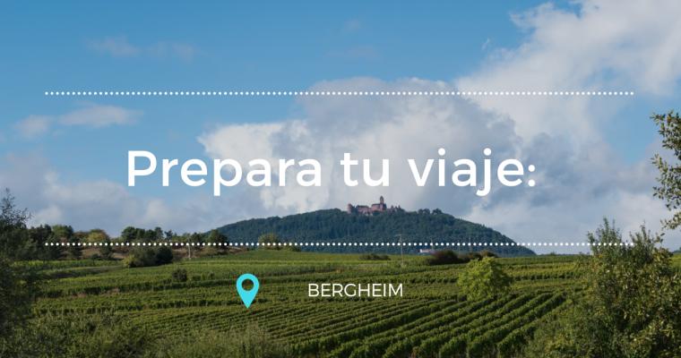 Prepara tu viaje: Bergheim
