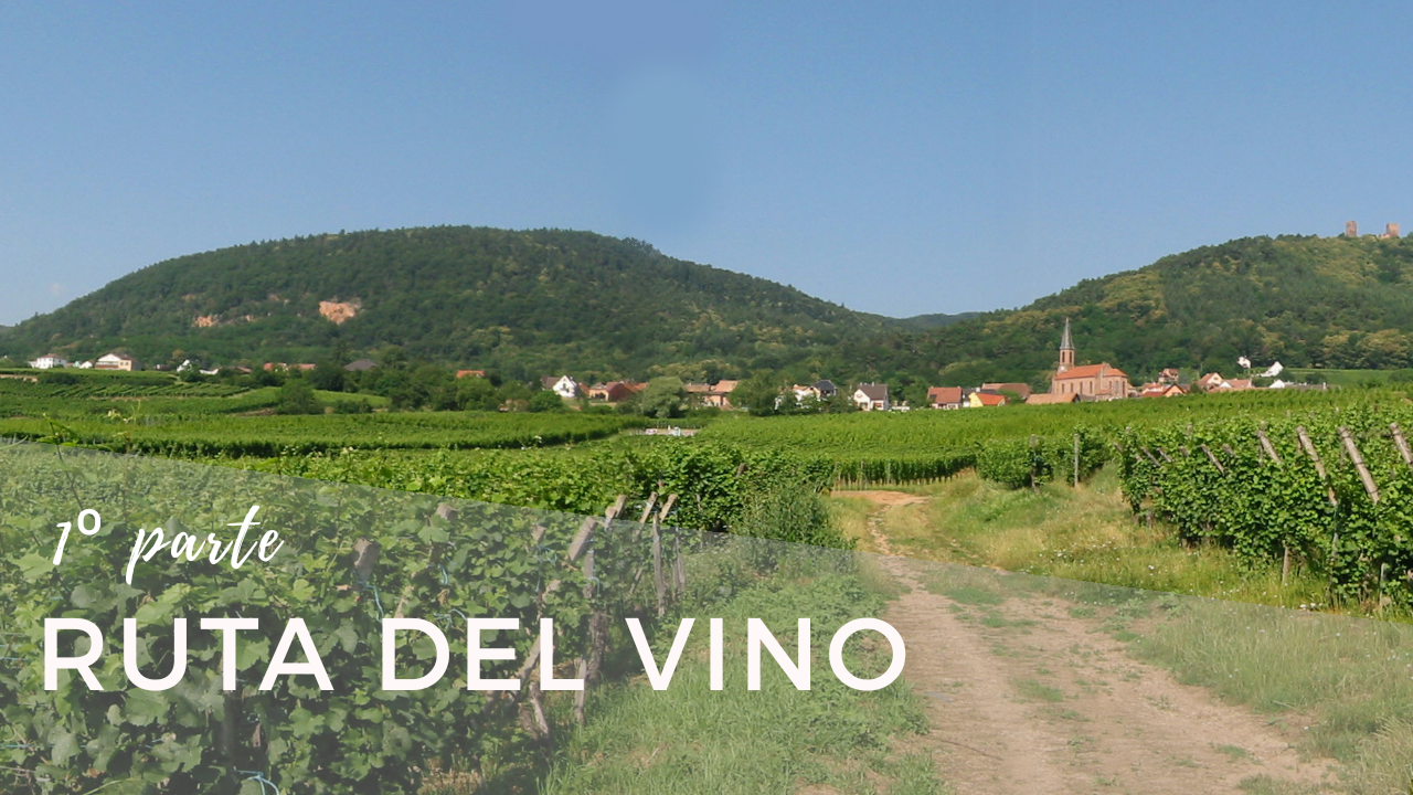 Ruta del Vino (I) Thann – Colmar