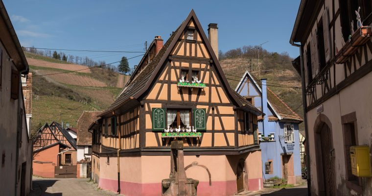 Una tarde de primavera en Niedermorschwihr