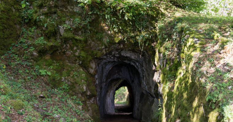 Castillo de Wildenstein